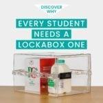 lockable food box | fridge lock box