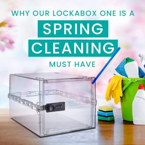 Spring cleaning   storage box